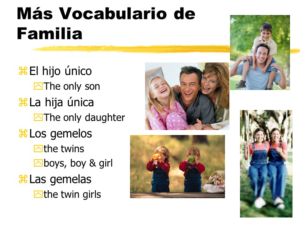Más Vocabulario de Familia zEl hijo único yThe only son zLa hija única yThe only daughter zLos gemelos ythe twins yboys, boy & girl zLas gemelas ythe