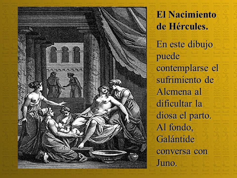 El Nacimiento de Hércules. En este dibujo puede contemplarse el sufrimiento de Alcmena al dificultar la diosa el parto. Al fondo, Galántide conversa c