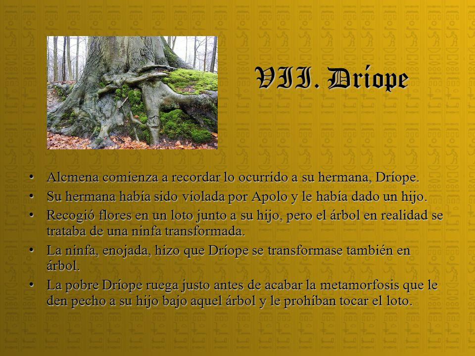VII. Dríope Alcmena comienza a recordar lo ocurrido a su hermana, Dríope. Alcmena comienza a recordar lo ocurrido a su hermana, Dríope. Su hermana hab