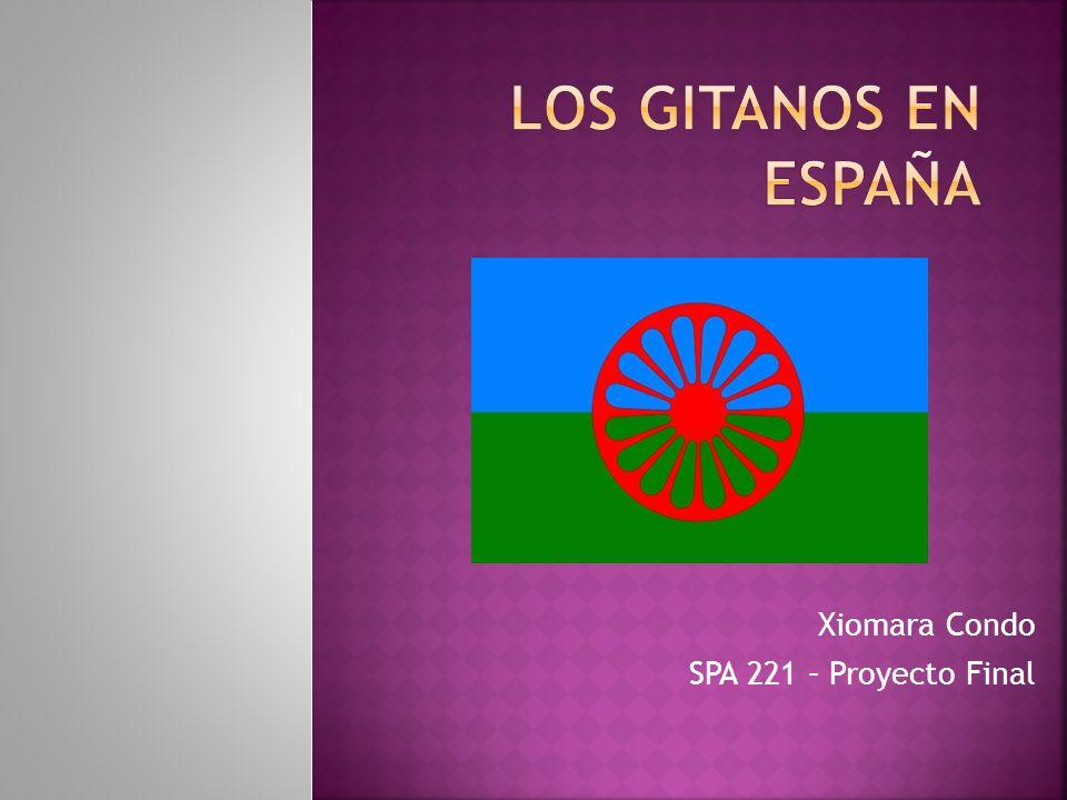 Xiomara Condo SPA 221 – Proyecto Final