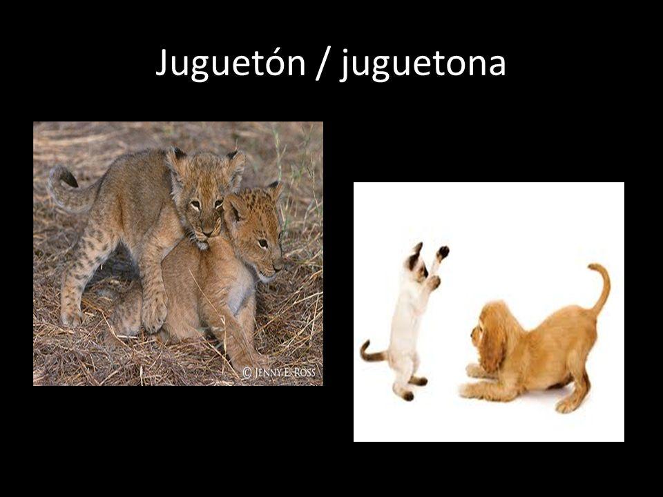 Juguetón / juguetona
