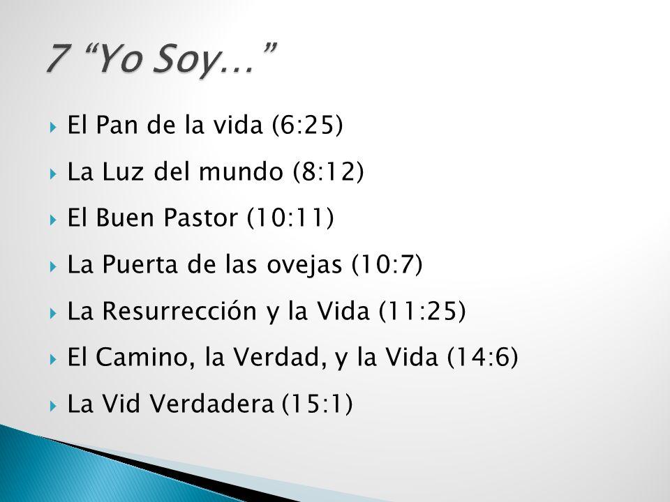 El Pan de la vida (6:25) La Luz del mundo (8:12) El Buen Pastor (10:11) La Puerta de las ovejas (10:7) La Resurrección y la Vida (11:25) El Camino, la