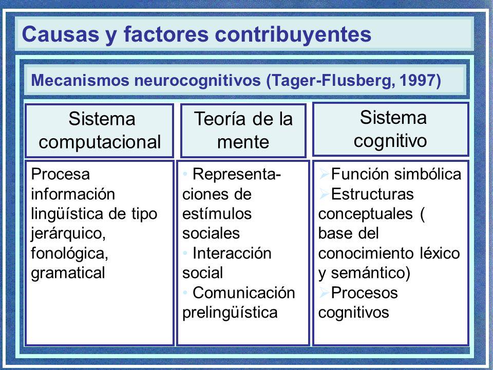 Causas y factores contribuyentes Procesa información lingüística de tipo jerárquico, fonológica, gramatical Mecanismos neurocognitivos (Tager-Flusberg, 1997) Representa- ciones de estímulos sociales Interacción social Comunicación prelingüística Función simbólica Estructuras conceptuales ( base del conocimiento léxico y semántico) Procesos cognitivos Sistema computacional Teoría de la mente Sistema cognitivo