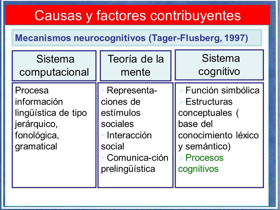 Causas y factores contribuyentes Procesa información lingüística de tipo jerárquico, fonológica, gramatical Mecanismos neurocognitivos (Tager-Flusberg, 1997) Representa- ciones de estímulos sociales Interacción social Comunica-ción prelingüística Función simbólica Estructuras conceptuales ( base del conocimiento léxico y semántico) Procesos cognitivos Sistema computacional Teoría de la mente Sistema cognitivo