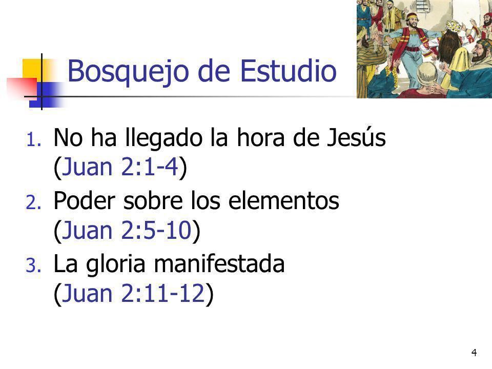 Bosquejo de Estudio 1. No ha llegado la hora de Jesús (Juan 2:1-4) 2. Poder sobre los elementos (Juan 2:5-10) 3. La gloria manifestada (Juan 2:11-12)