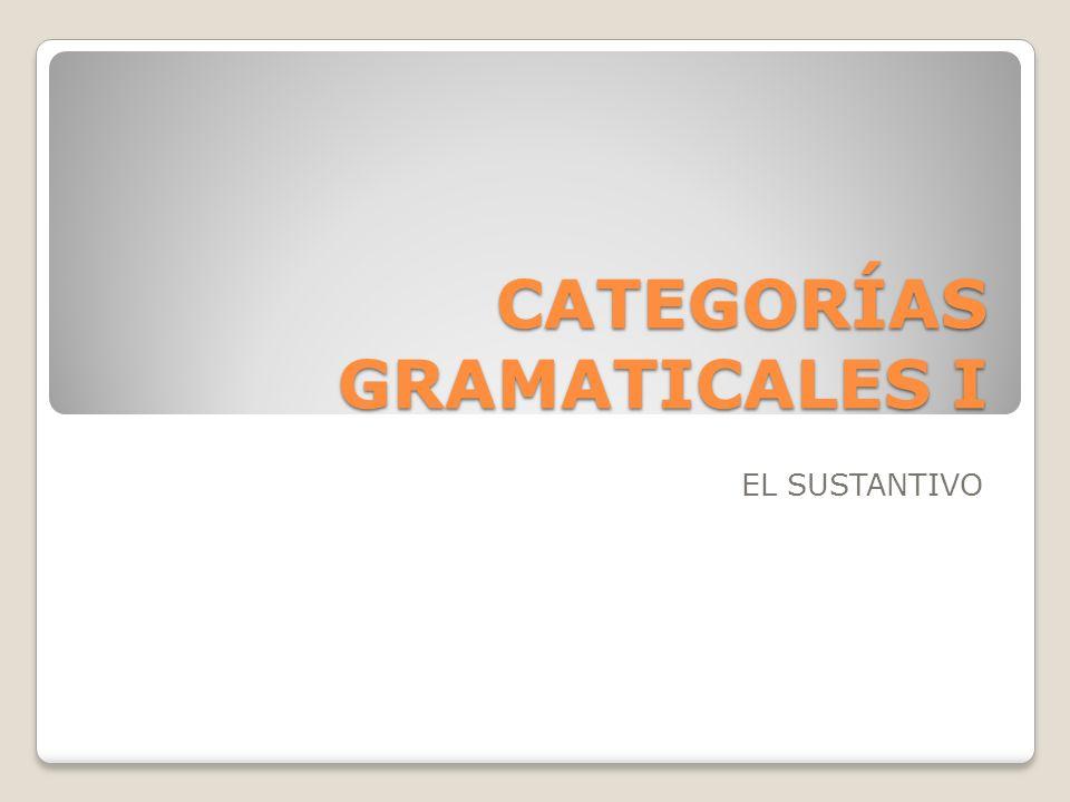 CATEGORÍAS GRAMATICALES I EL SUSTANTIVO