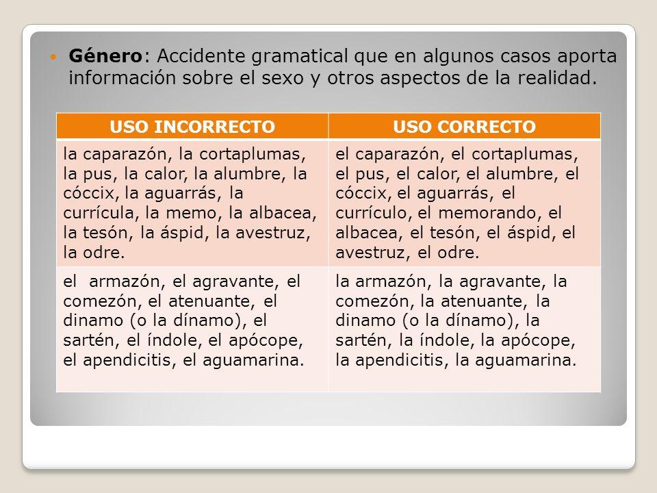 Género: Accidente gramatical que en algunos casos aporta información sobre el sexo y otros aspectos de la realidad. USO INCORRECTOUSO CORRECTO la capa