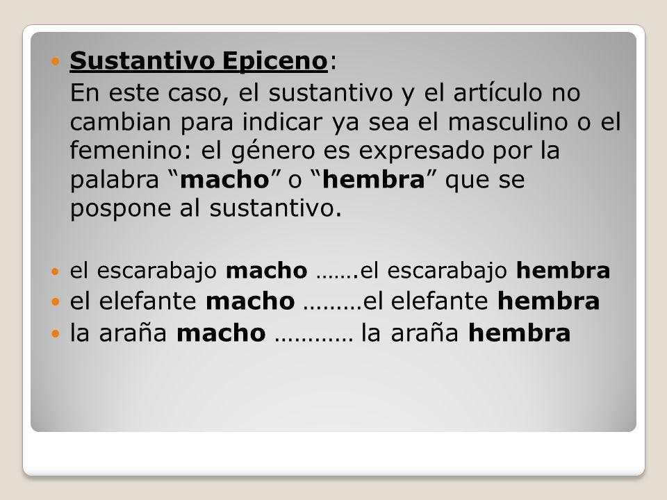 Sustantivo Epiceno: En este caso, el sustantivo y el artículo no cambian para indicar ya sea el masculino o el femenino: el género es expresado por la palabra macho o hembra que se pospone al sustantivo.