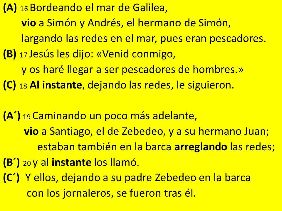 (A) 16 Bordeando el mar de Galilea, vio a Simón y Andrés, el hermano de Simón, largando las redes en el mar, pues eran pescadores.