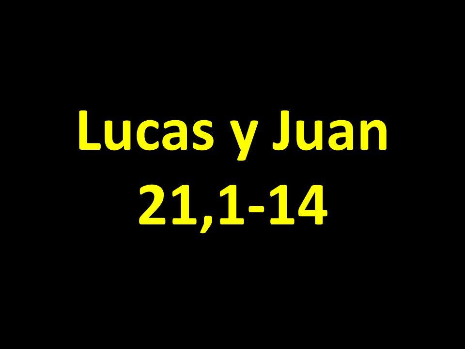 Lucas y Juan 21,1-14