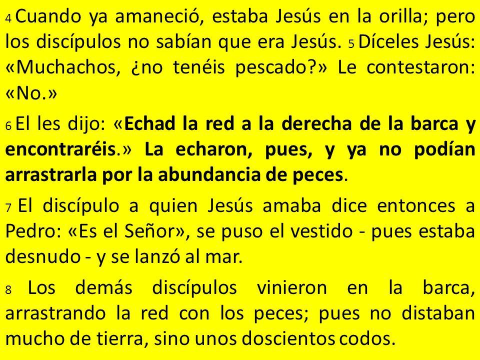 4 Cuando ya amaneció, estaba Jesús en la orilla; pero los discípulos no sabían que era Jesús.