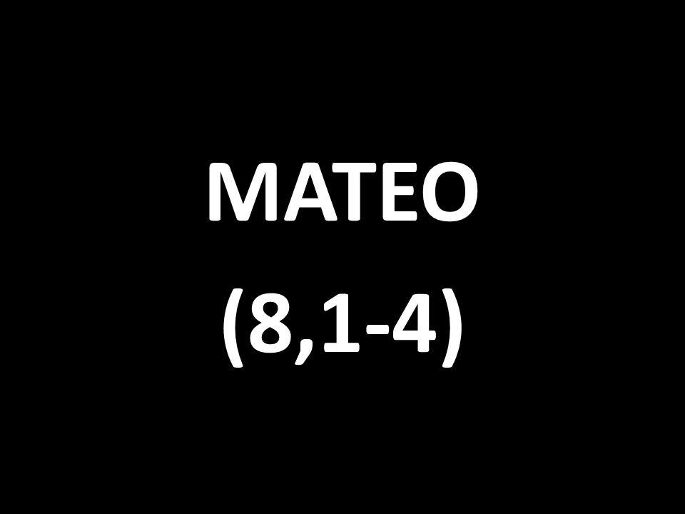 MATEO (8,1-4)