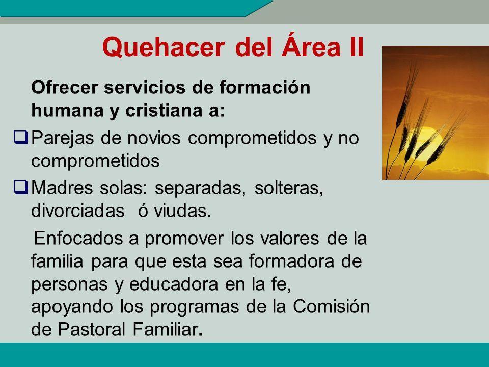 INDICADORES DE ÁREA II 1.- % de matrimonios capacitados que prestan servicios institucionales en la Diócesis. (del total de matrimonios que prestan se