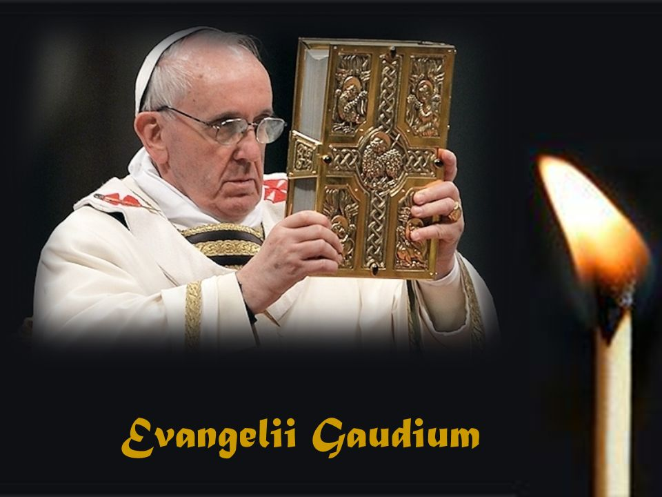 Enseñanzas, desafíos y propuestas de Francisco, el Pastor Universal