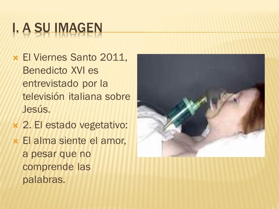 El Viernes Santo 2011, Benedicto XVI es entrevistado por la televisión italiana sobre Jesús. 2. El estado vegetativo: El alma siente el amor, a pesar