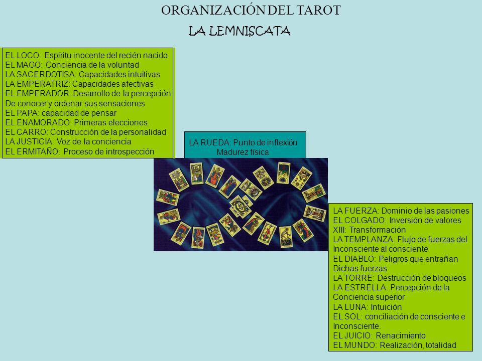 ORGANIZACIÓN DEL TAROT LA LEMNISCATA EL LOCO: Espíritu inocente del recién nacido EL MAGO: Conciencia de la voluntad LA SACERDOTISA: Capacidades intui