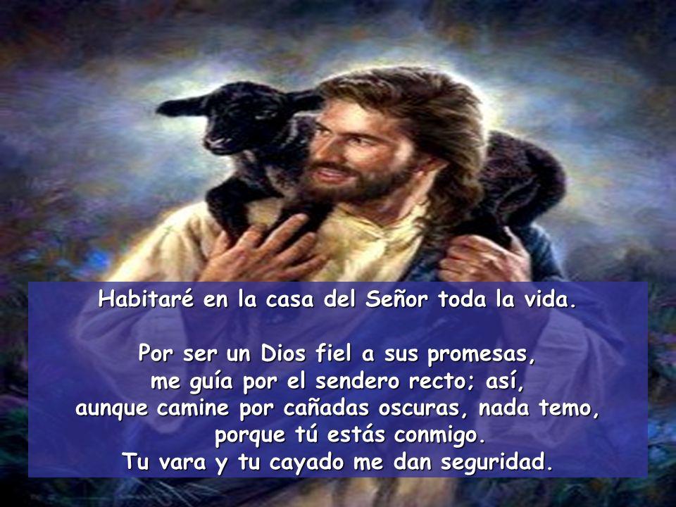 Habitaré en la casa del Señor toda la vida. El Señor es mi pastor, nada me falta; en verdes praderas me hace reposar y hacia fuentes tranquilas me con