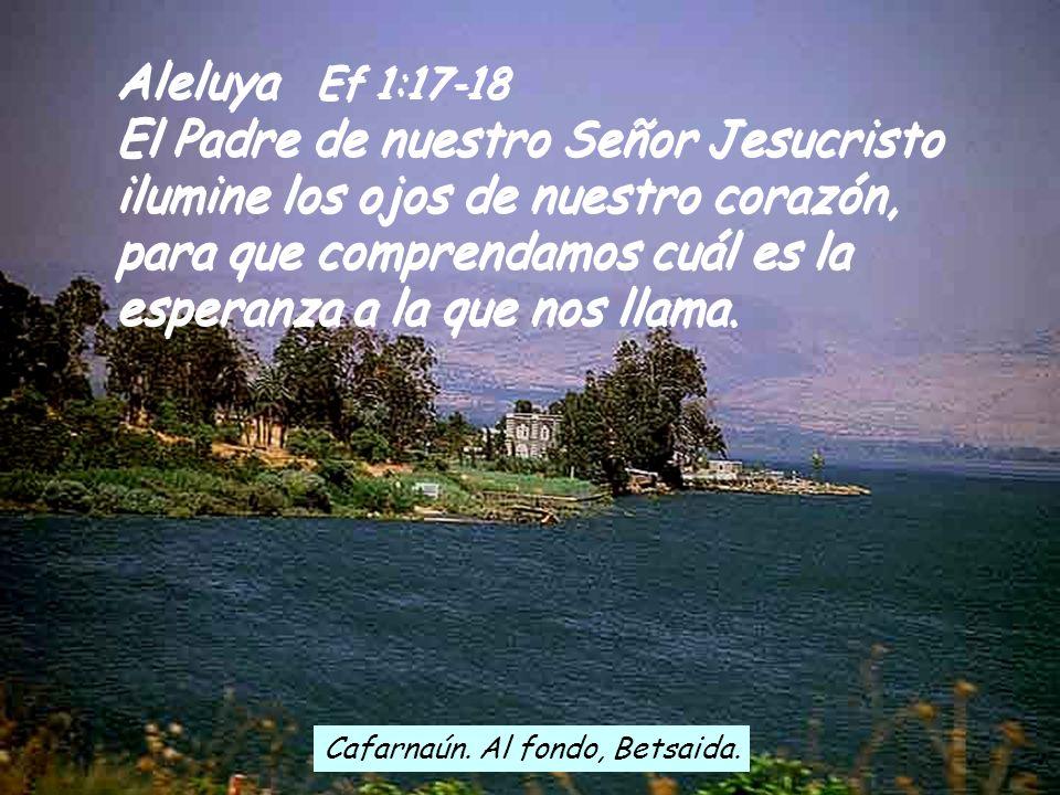 Fl 4:12-14.19-20 Sé pasar estrecheces y vivir en la abundancia. A todas y cada una de estas cosas estoy acostumbrado: a la hartura y al hambre, a que