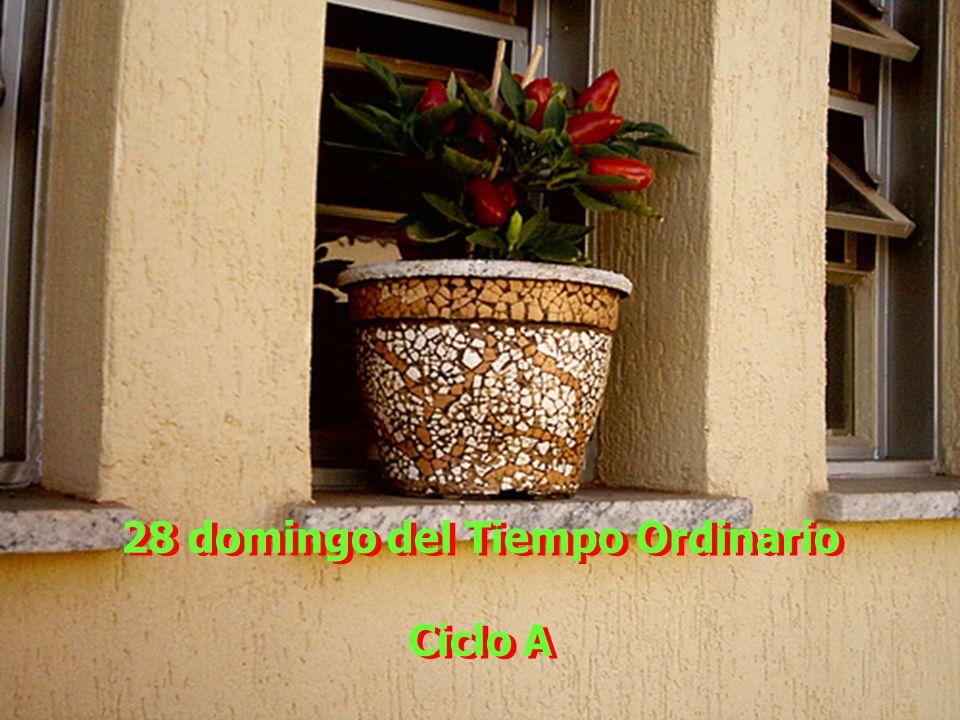 28 domingo del Tiempo Ordinario Ciclo A 28 domingo del Tiempo Ordinario Ciclo A