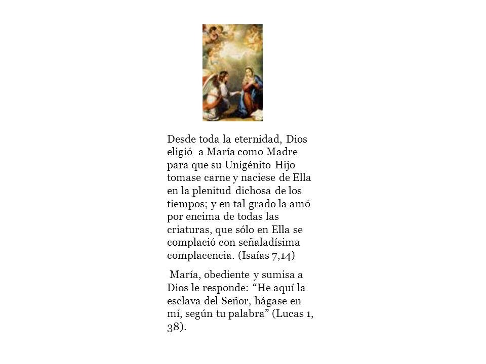DIARIO DE MARÍA Voz: Mónica Arroyo Click