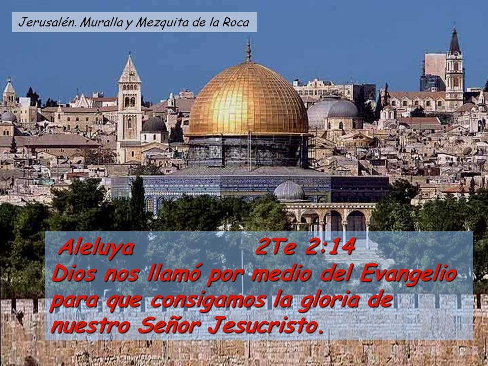 Aleluya 2Te 2:14 Aleluya 2Te 2:14 Dios nos llamó por medio del Evangelio para que consigamos la gloria de nuestro Señor Jesucristo.