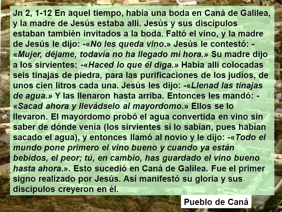 Jn 2, 1-12 En aquel tiempo, había una boda en Caná de Galilea, y la madre de Jesús estaba allí.