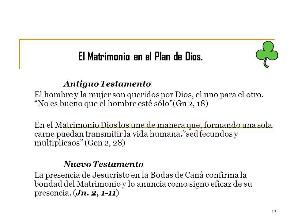 13 Antiguo Testamento El hombre y la mujer son queridos por Dios, el uno para el otro. No es bueno que el hombre esté sólo(Gn 2, 18) En el Matrimonio