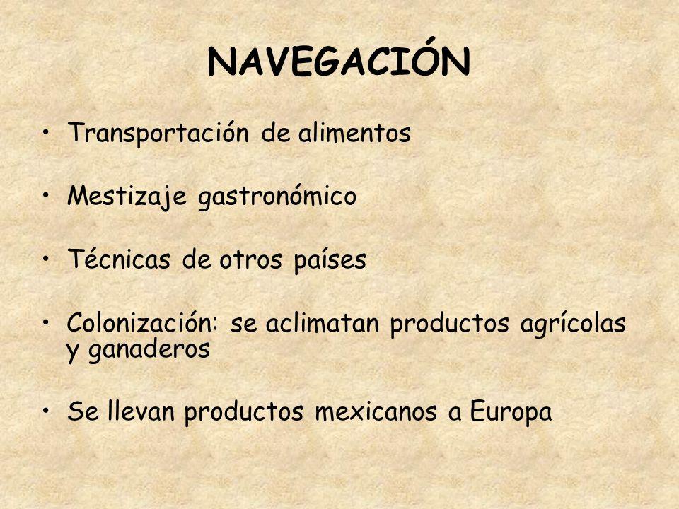 NAVEGACIÓN Transportación de alimentos Mestizaje gastronómico Técnicas de otros países Colonización: se aclimatan productos agrícolas y ganaderos Se l