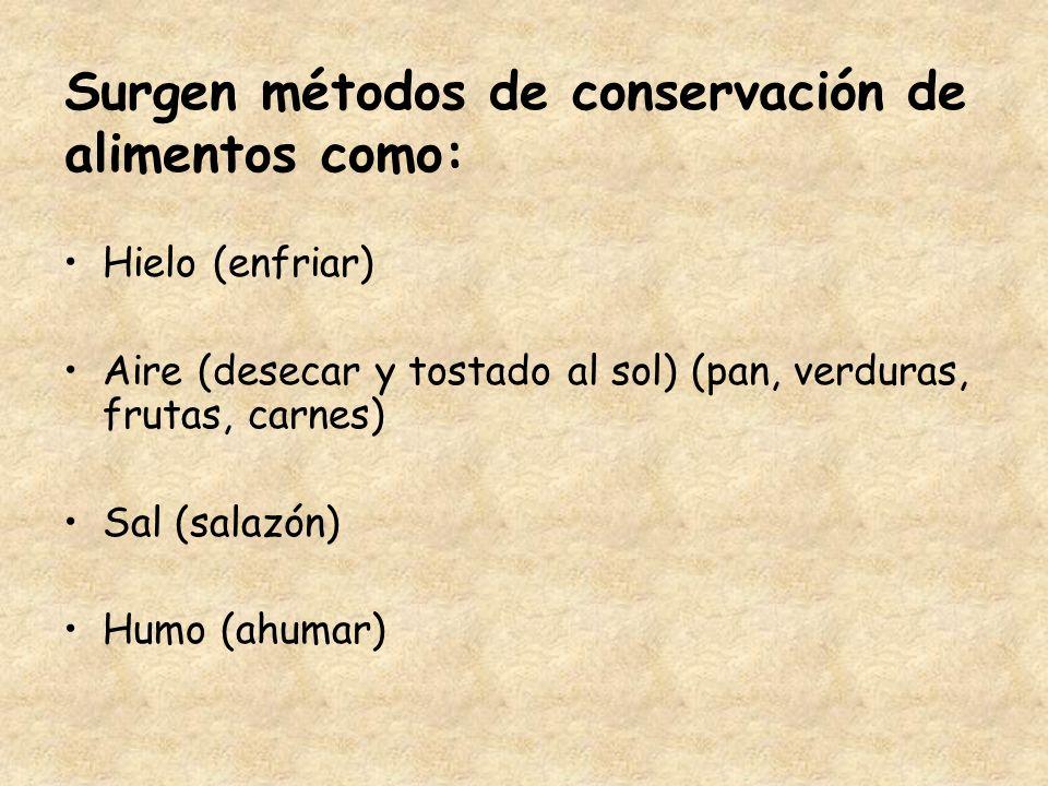 Surgen métodos de conservación de alimentos como: Hielo (enfriar) Aire (desecar y tostado al sol) (pan, verduras, frutas, carnes) Sal (salazón) Humo (