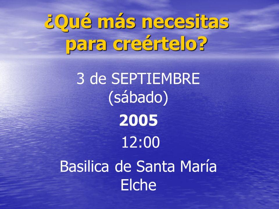 ¿Qué más necesitas para creértelo? 3 de SEPTIEMBRE (sábado) 2005 12:00 Basilica de Santa María Elche