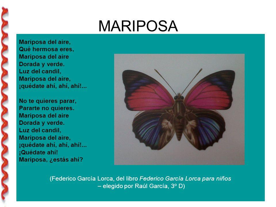 MARIPOSA Mariposa del aire, Qué hermosa eres, Mariposa del aire Dorada y verde.