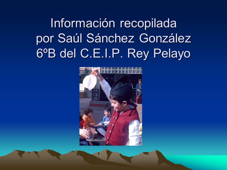 Información recopilada por Saúl Sánchez González 6ºB del C.E.I.P. Rey Pelayo