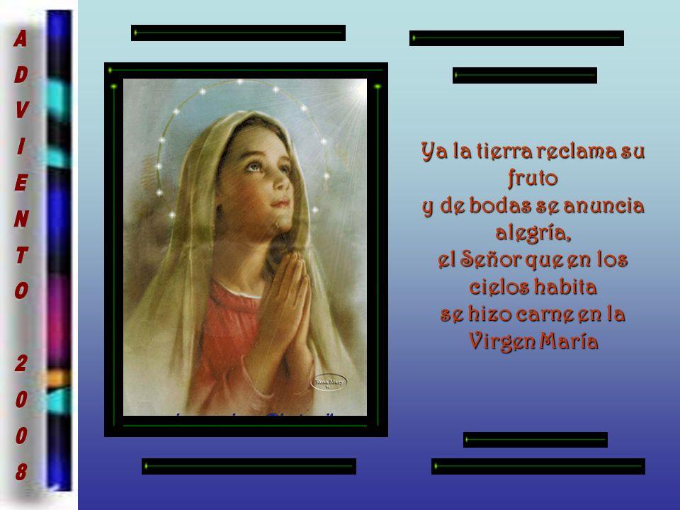 Ya la tierra reclama su fruto y de bodas se anuncia alegría, el Señor que en los cielos habita se hizo carne en la Virgen María