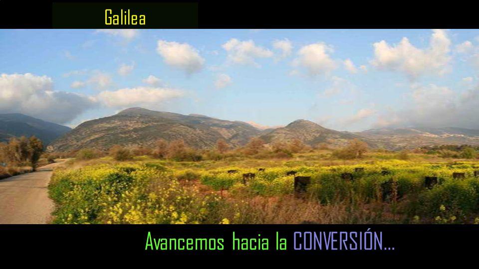Galilea Avancemos hacia la CONVERSIÓN…