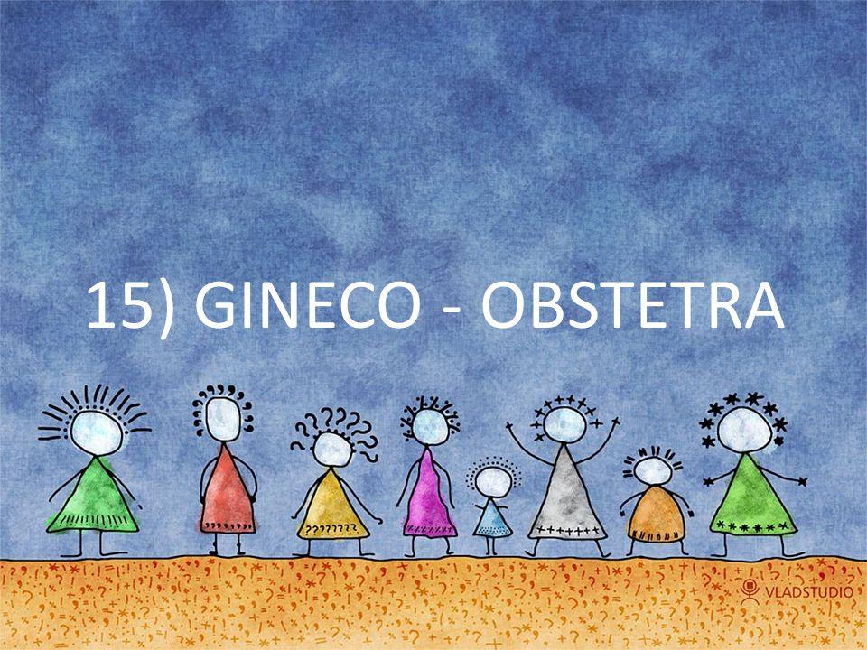 15) GINECO - OBSTETRA