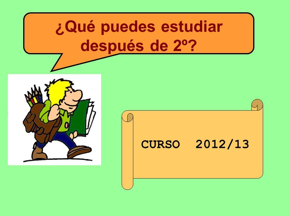 ¿Qué puedes estudiar después de 2º CURSO 2012/13