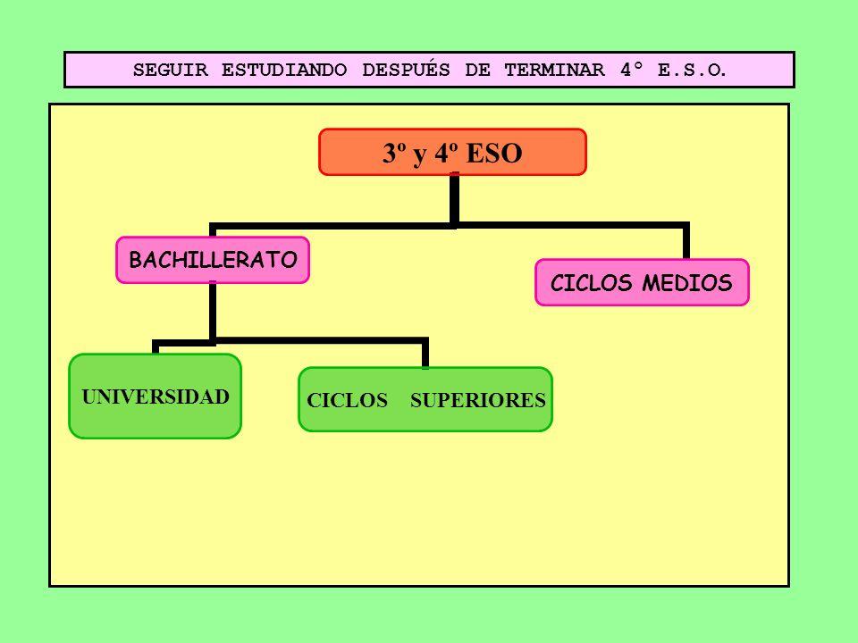 SEGUIR ESTUDIANDO DESPUÉS DE TERMINAR 4º E.S.O.