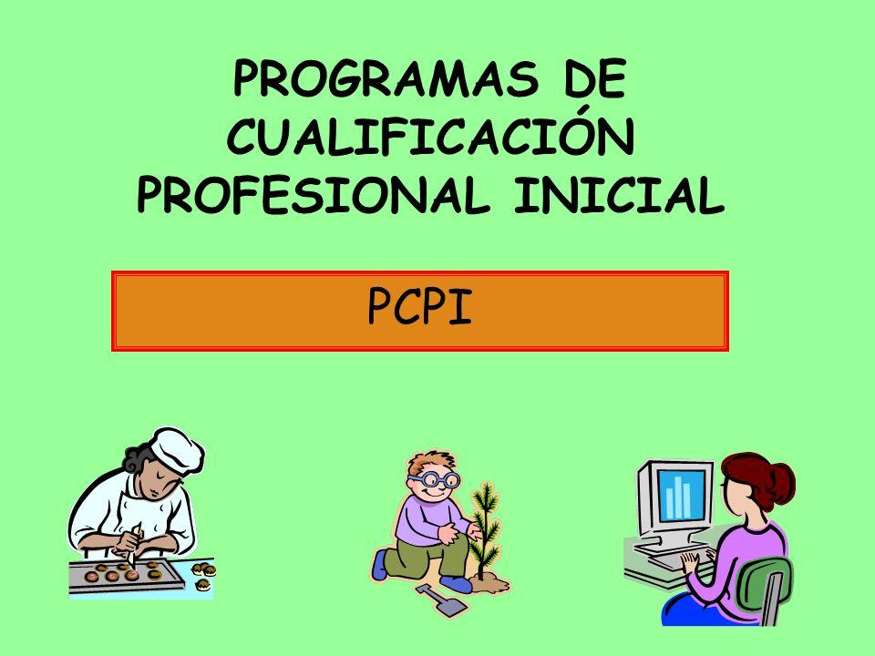PROGRAMAS DE CUALIFICACIÓN PROFESIONAL INICIAL PCPI