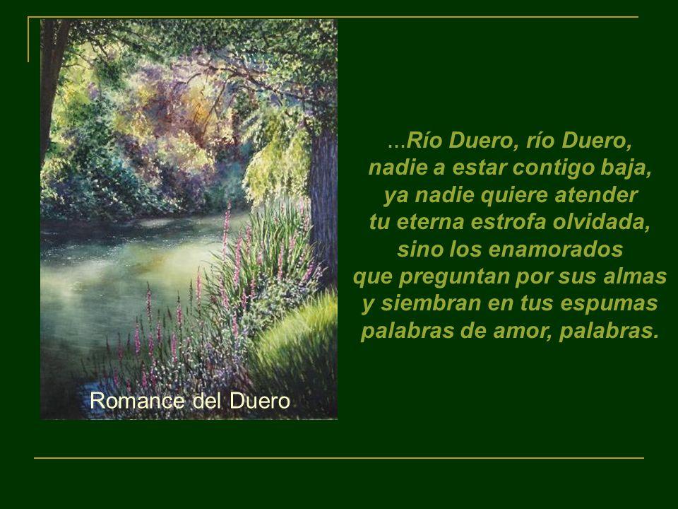 … Río Duero, río Duero, nadie a estar contigo baja, ya nadie quiere atender tu eterna estrofa olvidada, sino los enamorados que preguntan por sus almas y siembran en tus espumas palabras de amor, palabras.
