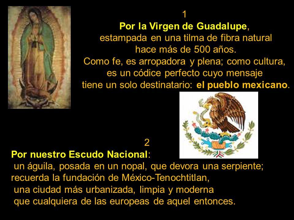 1 Por la Virgen de Guadalupe, estampada en una tilma de fibra natural hace más de 500 años.
