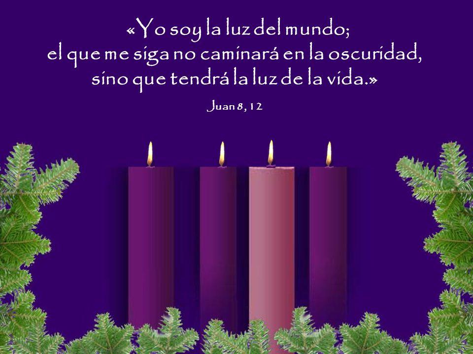 «Yo soy la luz del mundo; el que me siga no caminará en la oscuridad, sino que tendrá la luz de la vida.» Juan 8, 12