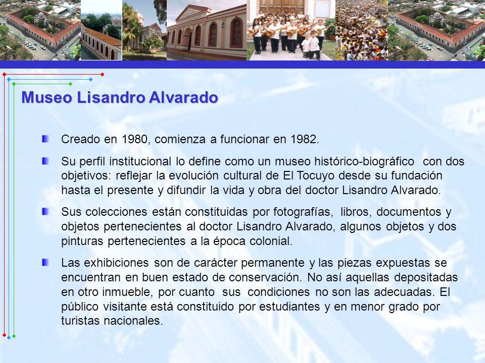 Creado en 1980, comienza a funcionar en 1982. Su perfil institucional lo define como un museo histórico-biográfico con dos objetivos: reflejar la evol