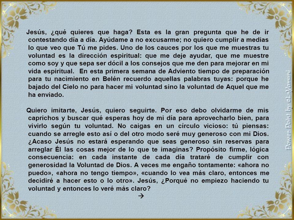 1er. Jueves de Adviento. No todo el que me dice: Señor, Señor, entrará en el Reino de los Cielos; sino el que hace la voluntad de mi Padre que está en