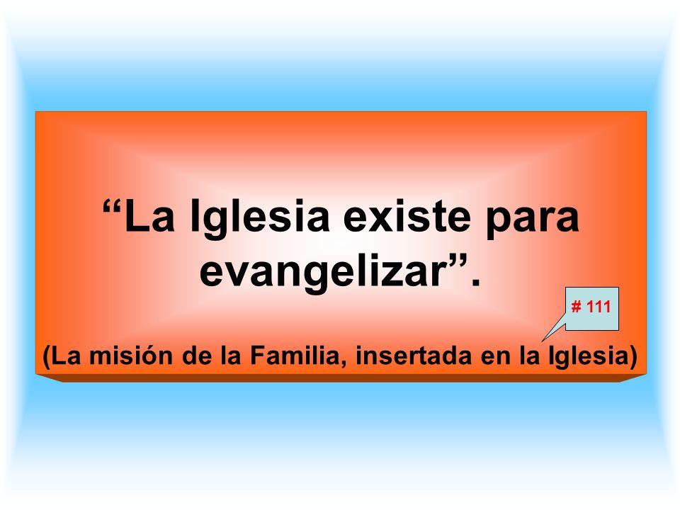 Participación de la familia en el ser y la misión de la Iglesia Misión de la Iglesia, misión de la familia Misión profética de la familia El matrimonio y su misión profética El Evangelio de la familia Misión sacerdotal de la familia Los sacramentos en la misión sacerdotal de la familia.