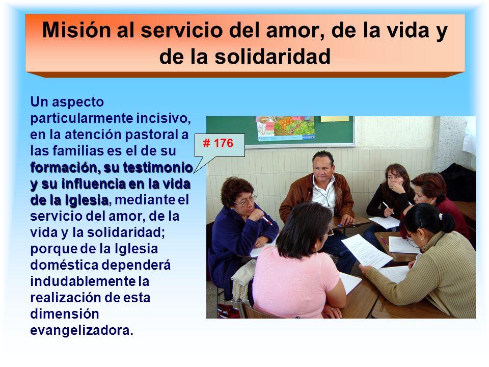 Misión al servicio del amor, de la vida y de la solidaridad formación, su testimonio y su influencia en la vida de la Iglesia Un aspecto particularmen