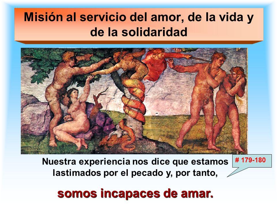 Misión al servicio del amor, de la vida y de la solidaridad Nuestra experiencia nos dice que estamos lastimados por el pecado y, por tanto, somos inca