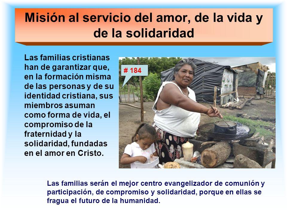 Misión al servicio del amor, de la vida y de la solidaridad Las familias cristianas han de garantizar que, en la formación misma de las personas y de