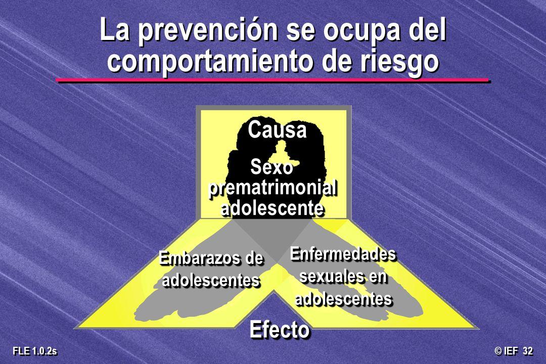 © IEF 32 FLE 1.0.2s Sexo prematrimonial adolescente Embarazos de adolescentes EfectoEfecto Enfermedades sexuales en adolescentes La prevención se ocup