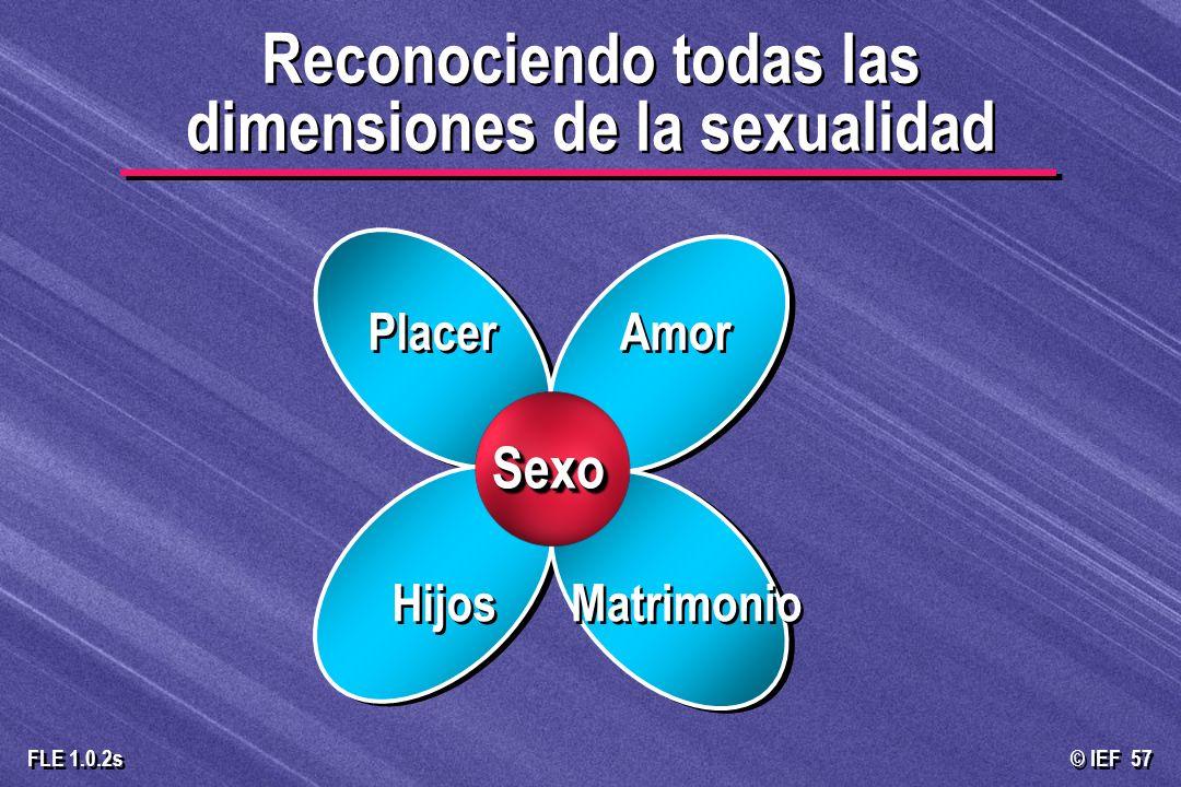 © IEF 57 FLE 1.0.2s Reconociendo todas las dimensiones de la sexualidad Hijos Matrimonio Placer Amor SexoSexo