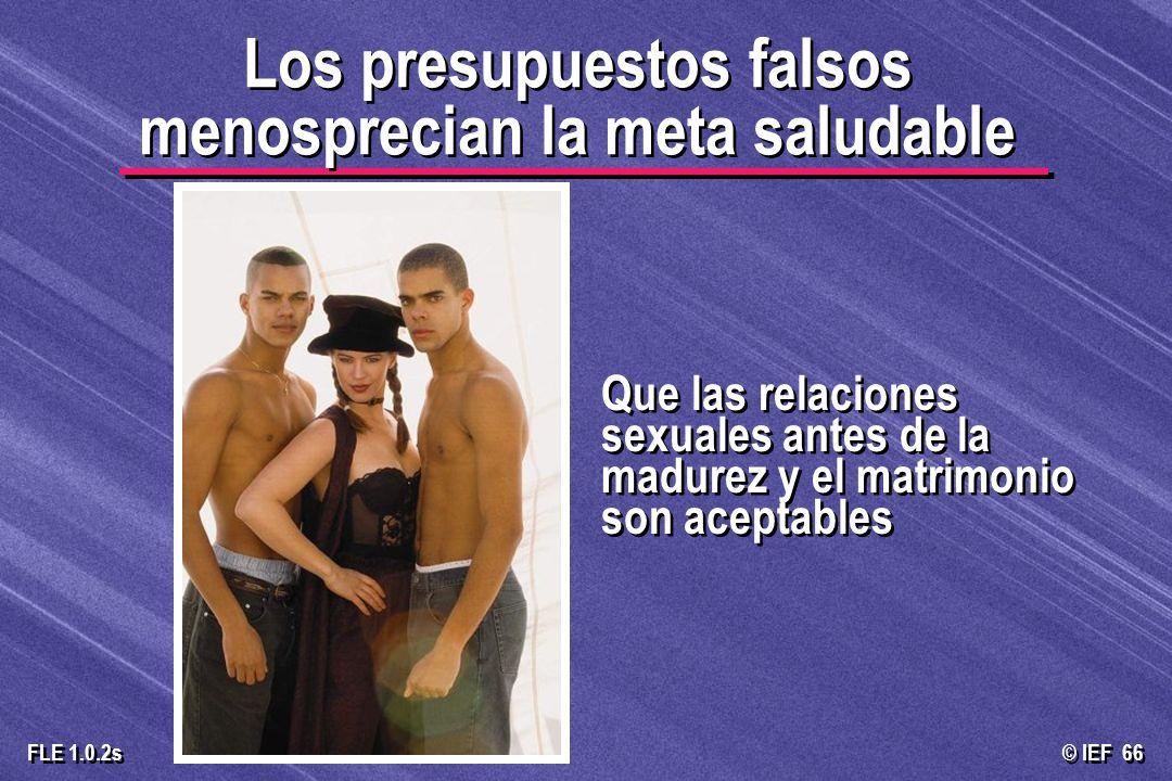 © IEF 66 FLE 1.0.2s Que las relaciones sexuales antes de la madurez y el matrimonio son aceptables Los presupuestos falsos menosprecian la meta saluda